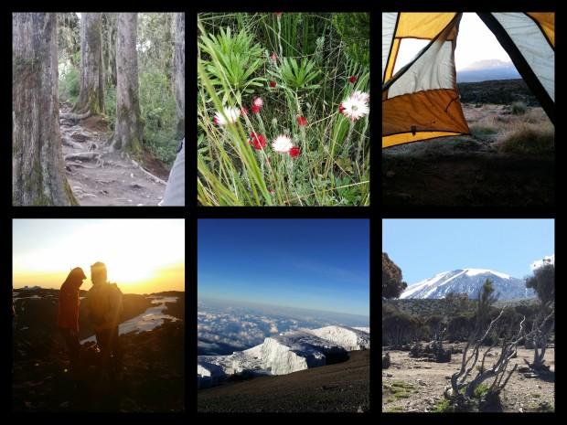 Journey to Kilimanjaro